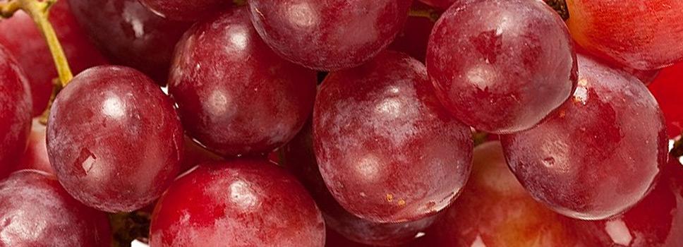 winogrona_redglobe